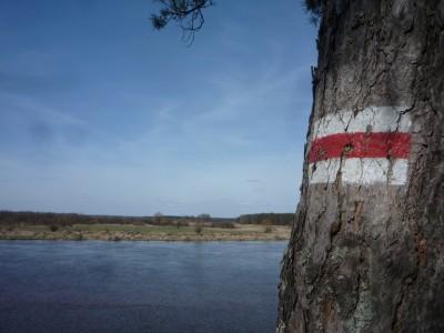 My jednak poszukiwaliśmy też większych rzek. Rowerami ruszyliśmy nad Bug.