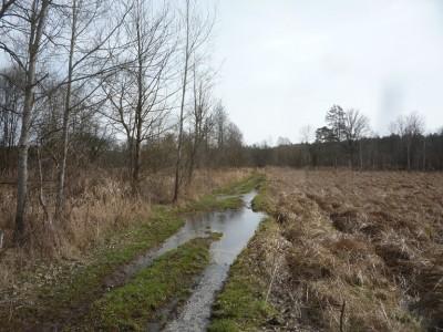 W efekcie, tam gdzie droga przez teren zalewowy nie została wyniesiona...